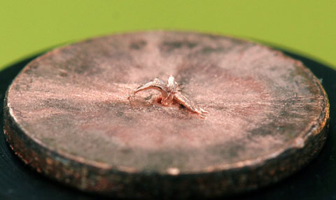 radioactividade-proton21_ruptured_electrode.jpg Miniatura